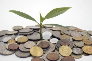 money grows